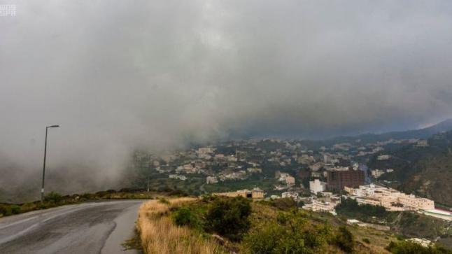 الأرصاد الجوية وحماية البيئة تتوقع سقوط أمطار رعدية على العديد من مناطق المملكة