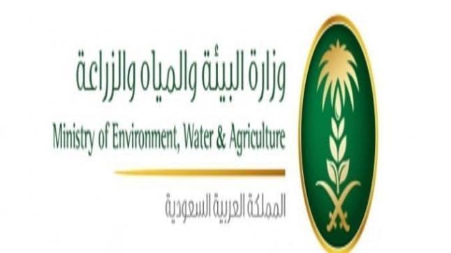 إشادة دولية بجهود المملكة في مجال مكافحة التصحر وإعادة تأهيل الغطاء النباتي